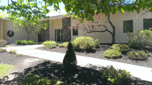 Vermont Sport and Fitness Club